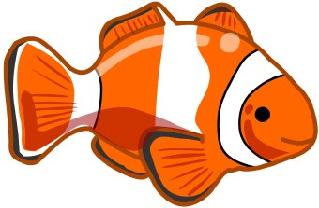 Fish Base.png